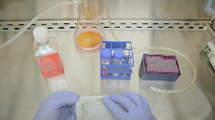 Cell culture Stock Footage