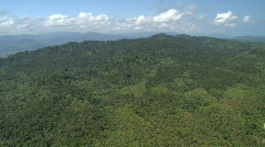 Aerial over loose jungle and tropical forest - stock footage