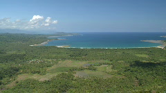 Aerial over loose jungle and palms towards the beach Stock Footage