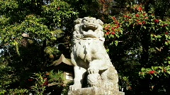 ShiShi Statue (Lion) Stock Footage