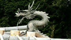 Dragon Head Fountain (close up) - stock footage