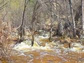 Desert River runs wild Stock Footage