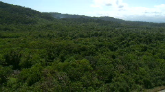 Aerial over the meandering river of a tropical mangrove - stock footage