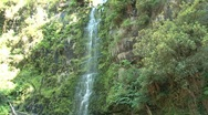 Stock Video Footage of Erskine Falls