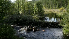 Beaver dam in a whitewater river in Sweden. Stock Footage