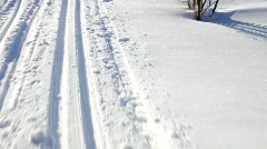 Skiing down a hill through a Swedish forest. - stock footage