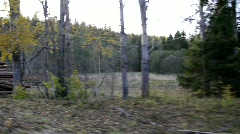 Driving past stacked timber at a forest clearance in autumn. Stock Footage