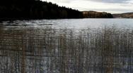 Swedish lake on an autumn afternoon. Stock Footage