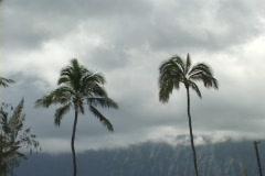 Kailua Cloudy Stock Footage