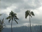 Stock Video Footage of Kailua Cloudy