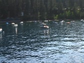 Stock Video Footage of Lake Tahoe by Boat