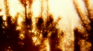 Wildfire, Firework bombing 04 up - Vintage 8mm film Stock Footage