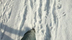 Walking In The Snow Stock Footage