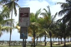 Condado - Puerto Rico: No swimming 2 Stock Footage