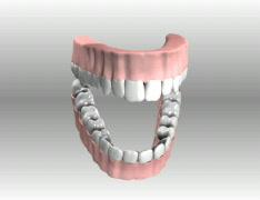 ToothMovie 1 Stock Footage