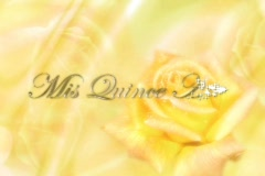 Stock Video Footage of 5224 Mis Quince Años