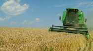 Combine Harvesting Wheat 03 Stock Footage
