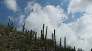Saguaro Ridge Time Lapse  Stock Footage