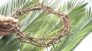 Man Places Crown Of Thorns On Bed Of Palm Branches Stock Footage
