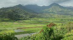 Hanalei Valley, Kauai, Hawaii (pan) Stock Footage