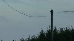 Telephone wires in gale 4 Stock Footage