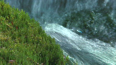 Stream and moss bank  Stock Footage