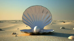 Sea Shell (Front) Stock Footage