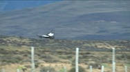 Andean Condor in Argentina Stock Footage