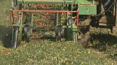 Tomato harvester fruit pick up Stock Footage