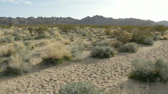 Barren Desert Path Stock Footage