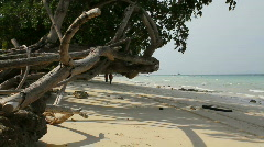 Beach Labor - stock footage