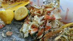 Crab Feast Aftermath Stock Footage