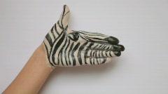 Hand Paint Zebra Stock Footage