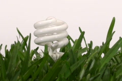 Energy saving light bulb in grass V3 - NTSC Stock Footage
