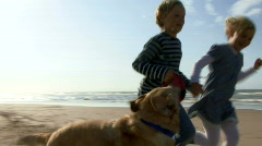 WS, Handheld, Children running hand in hand on beach with dog - stock footage