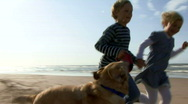 WS, Handheld, Children running hand in hand on beach with dog Stock Footage
