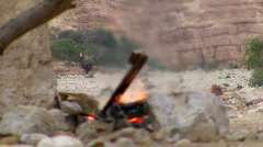 Campsite bonfire. Bird jumping in front of fire. Stock Footage