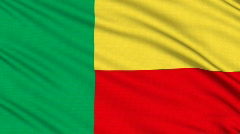 Benin flag, with real structure of a fabric Stock Footage