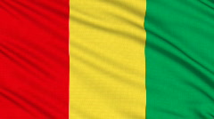 Guinea flag, with real structure of a fabric Stock Footage