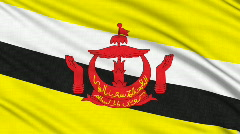 Brunei Flag, with real structure of a fabric Stock Footage