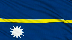 Nauru Flag, with real structure of a fabric Stock Footage