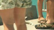 Small shark Stock Footage