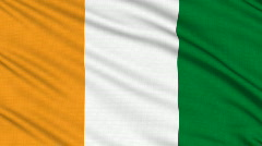 Ivory Coast flag, with real structure of a fabric Stock Footage