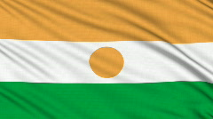 Nigerian Flag, with real structure of a fabric Stock Footage