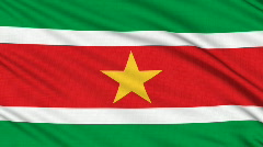 Suriname flag, with real structure of a fabric Stock Footage