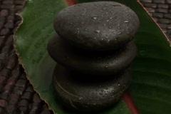 Zen rocks and tropical leaf loop - NTSC - stock footage