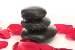 Zen rocks with roses zoom V2 - NTSC Stock Footage
