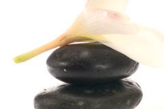 Zen rocks and Frangipani flower zoom - NTSC - stock footage