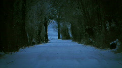 JHD - Seasons - Winter - Mystical Dark Snow Scene 00061 Stock Footage