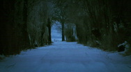 Stock Video Footage of jHD - Seasons - Winter - Mystical Dark Snow Scene 00061